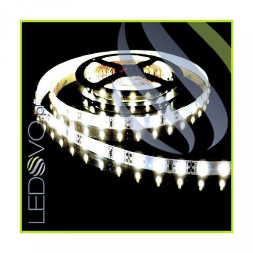 TAŚMA 300 LED Epistar / standard / BIAŁY NEUTRALNY/ 1 metr