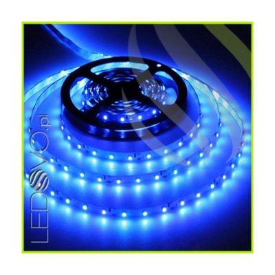TAŚMA 300 LED 3528 / standard / NIEBIESKI / 1MB