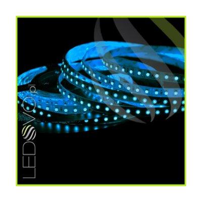 TAŚMA 600 LED 3528 / Wodoodporna IP65 / ROLKA 5m / NIEBIESKA