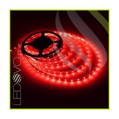 TAŚMA 300 LED 3528 / standard / ROLKA 5 m / CZERWONY