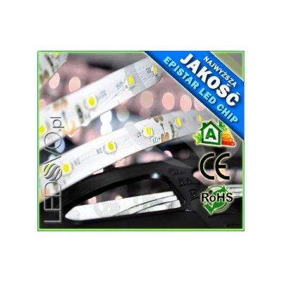 TAŚMA LED 60 diód/mb / wodoodporna / BIAŁY ZIMNY / 5cm