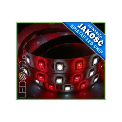 TAŚMA LED RGBW RGB+BIAŁY ZIMNY / Epistar 5050 300 LED / 1mb