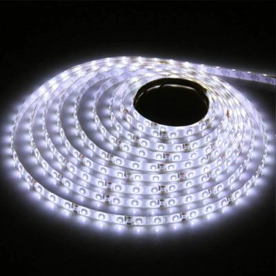 TAŚMA PREMIUM 300 LED / standard / 1 mb / BIAŁY ZIMNY 6000K